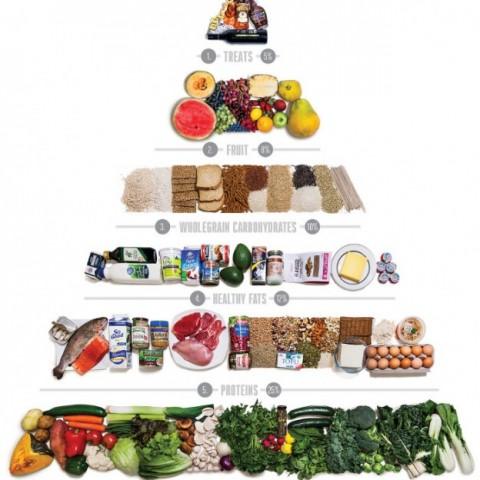 A new food pyramid makes sense